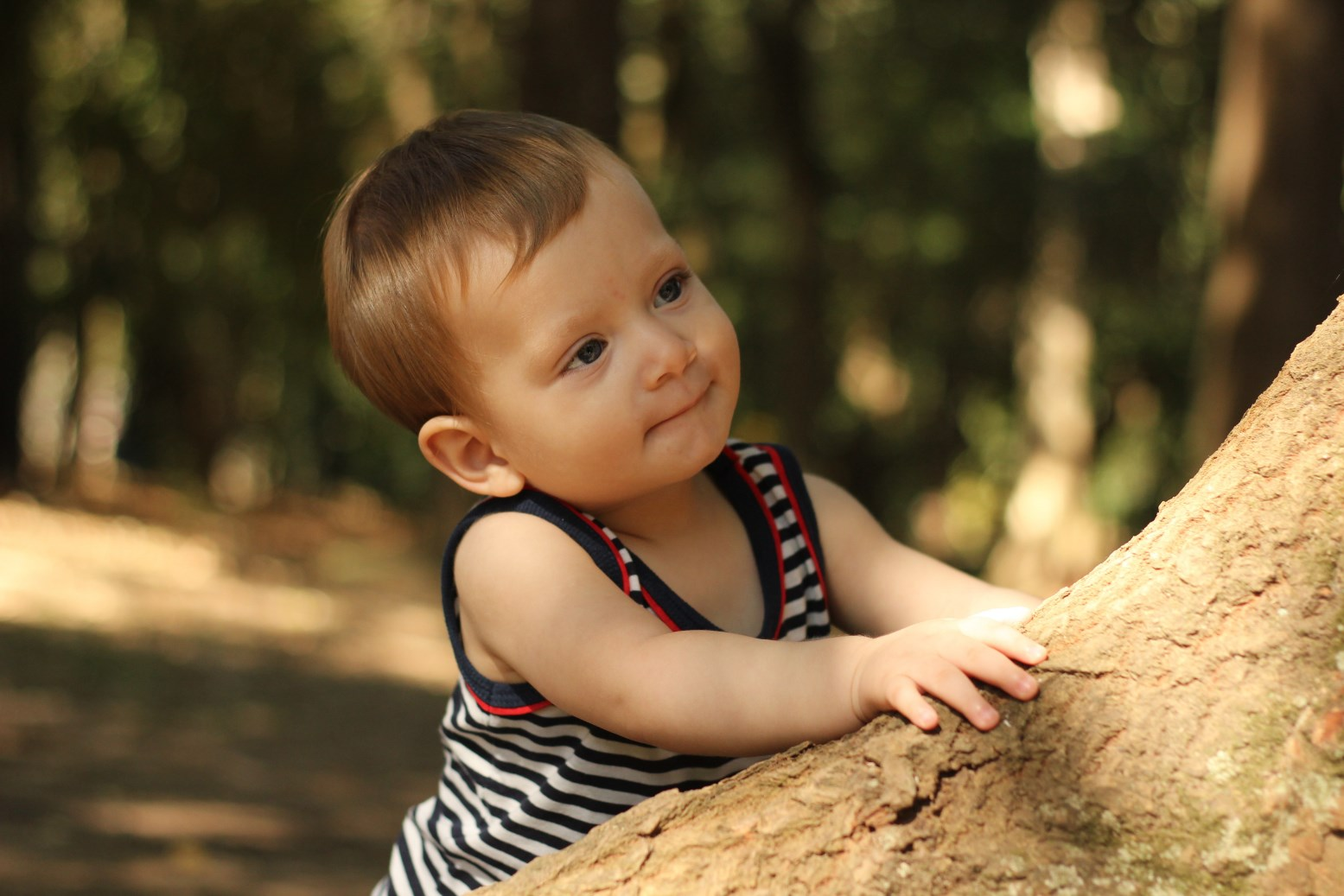 baby boy thoughtfully looking up a tree he is climbing.